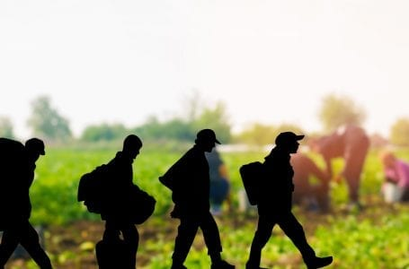Italy to regularize thousands of migrant workers