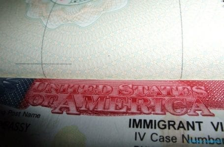 What does President Trump's suspension of H-1B visa mean and how will it impact Indians?