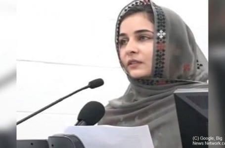 Another Pakistani activist found dead in Toronto