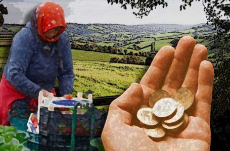 Britain Criticized Over Migrant Workers Ill-treatment In Agriculture Farms