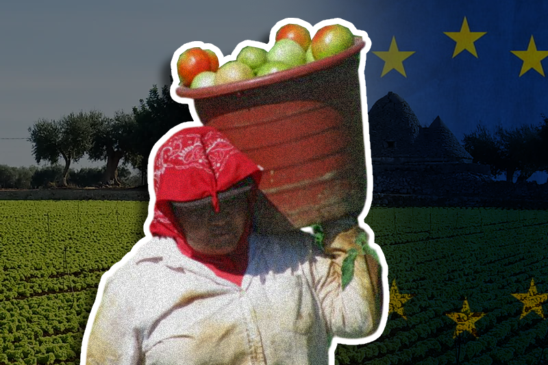 Europe comes down heavy on illegal migrant work in farms