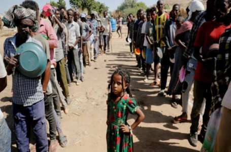 G7 calls for unhindered aid access to Tigray region amid UN reports of famine conditions