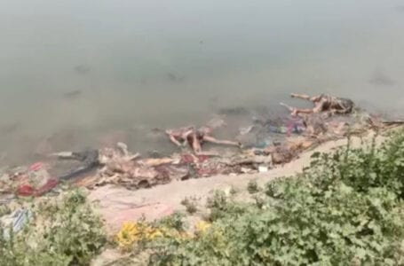 NHRC issues notice to Centre, Bihar, UP govts over bodies floating in Ganga