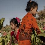 laos child labor