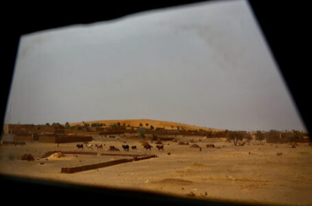 Human Rights experts critically call on the rise in attacks on slaves in Mali