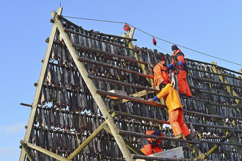 migrant workers norway