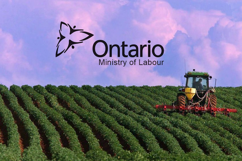 ontario ministry of labour against farm owners in ontario, canada