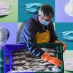 seawood workers
