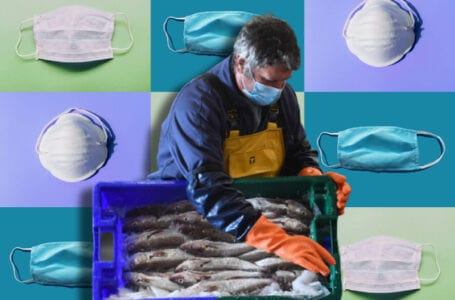 Migrant seafood workers at risk due Covid-19 pandemic, companies remain ignorant to their lives