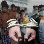 Thailand crackdown