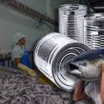 tuna workers