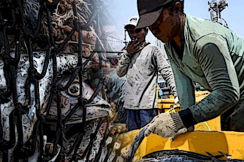 taiwan labor rights