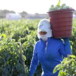 us market labor abuse