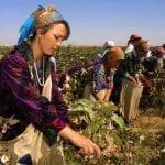 Uzbek Cotton Frees Children