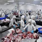 buffalo meat ban