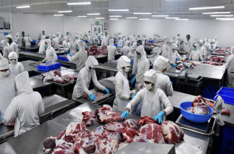 Indonesia scraps rumors of ban on buffalo meat from India
