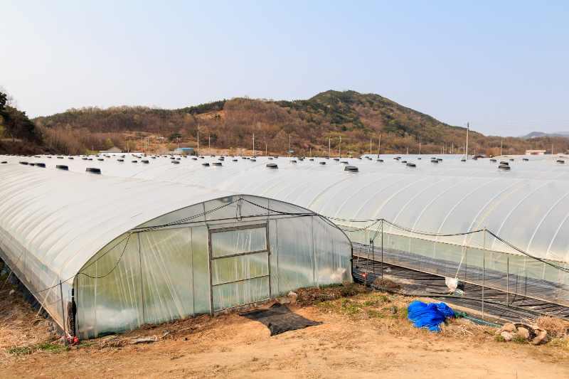 vinyl greenhouse